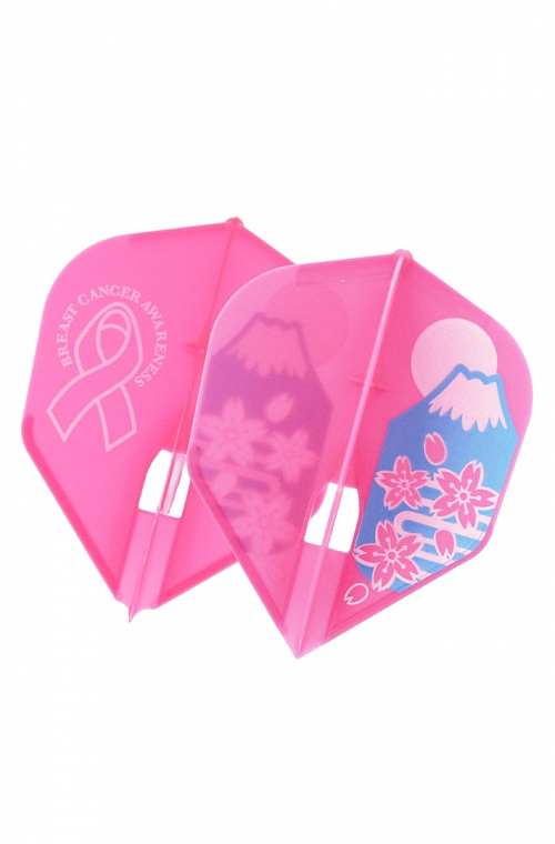 Champagne Shape Stacy Bromberg Breast Cancer Flights